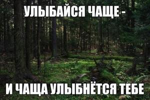 009_11102013
