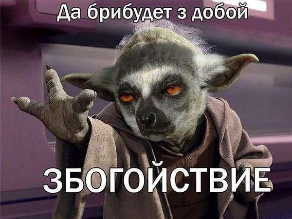 006_20122013