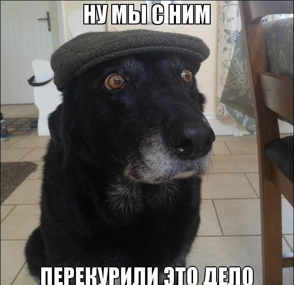 014_20122013