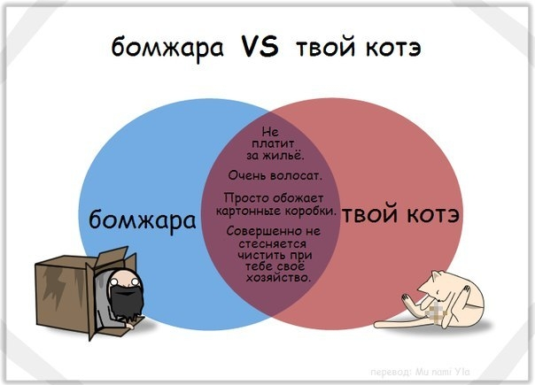 001_31012013