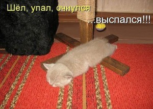 018_15022014