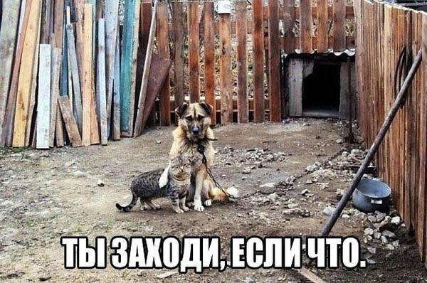 016_21032014