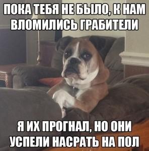 023_25042014