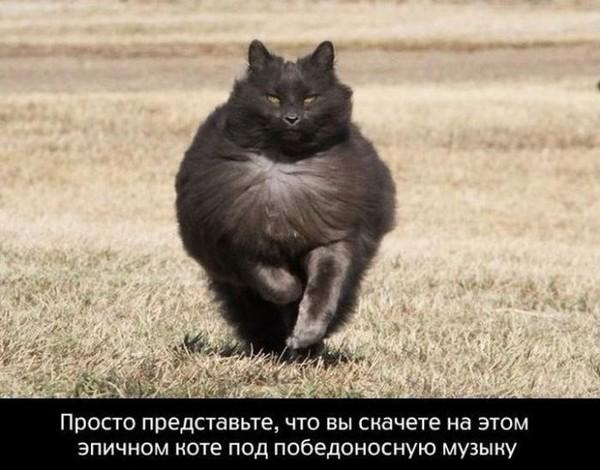034_11042014