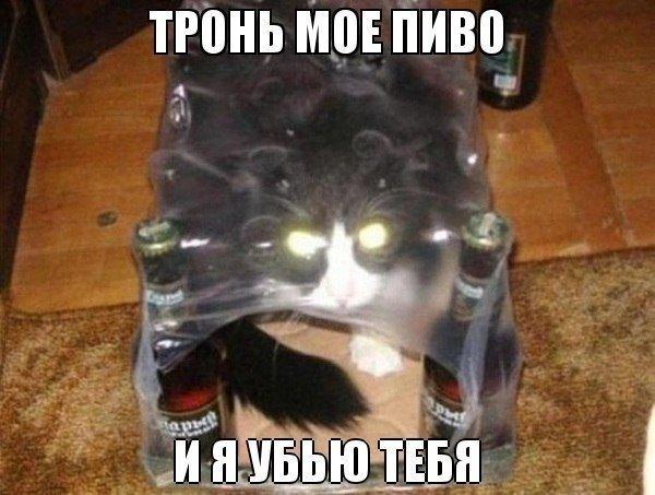 003_15082014