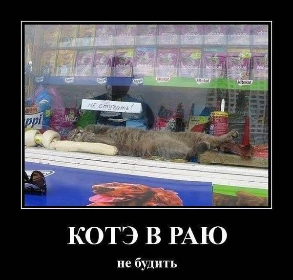 006_21032015