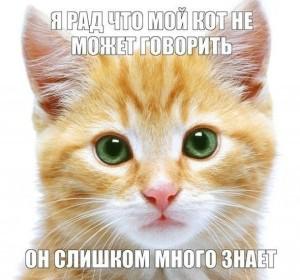 010_14082013