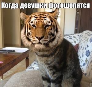 006_13122013