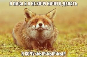014_13122013