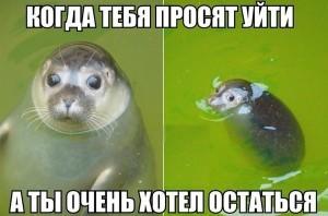 028_06122013