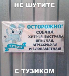 006_08112018